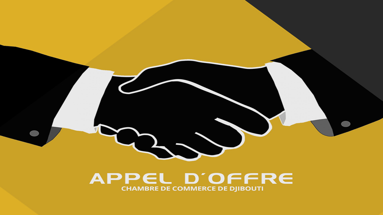 APPEL D'OFFRE DU CAMP LEMONNIER